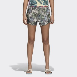 Szorty adidas Originals Farm Shorts CW4728